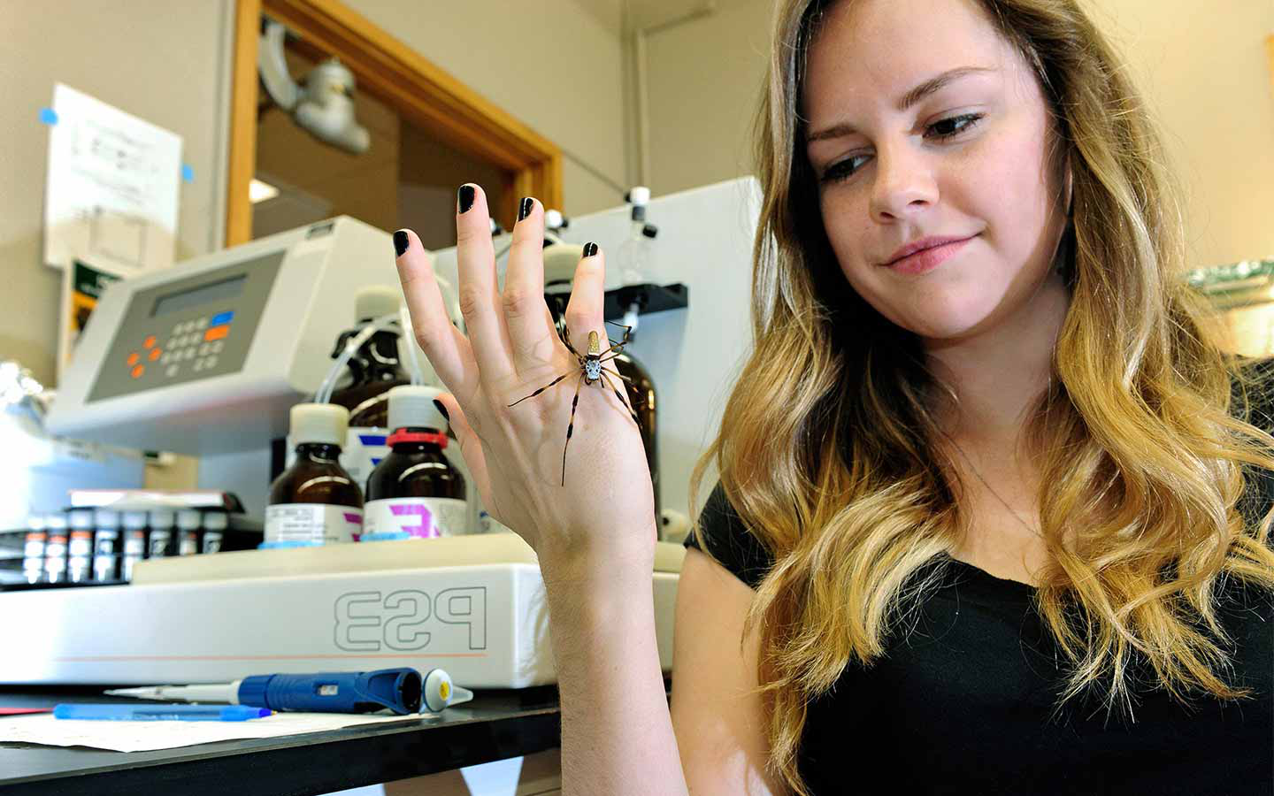 Female graduate student in lab holding spider